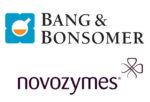 bang-bonsomer--novozymes
