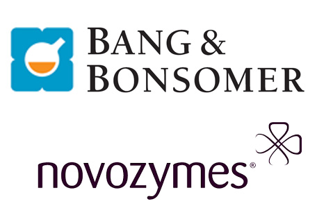 bang-bonsomer--novozymes